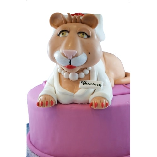 Nurse Kitty Cake