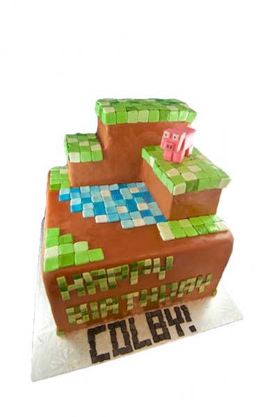 Minecraft Sculpted Cake