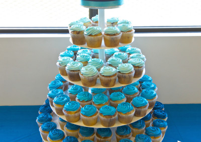 Blue Ombre Cupcake Tower Wedding Cupcakes